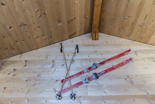 Chalet Umbau Ski